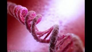 Could you find your soul mate using DNA Genetic testing and virtual reality will transform how we da