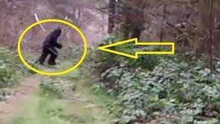 Sierra Sasquatch Bigfoot FULL DOCUMENTARY