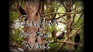 Shadows on the wall - Strange things are happening