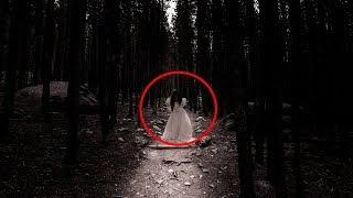 Mysterious 'Ghost Lights' in Forest Draw Thrill Seekers!! Supernatural Spirit Video