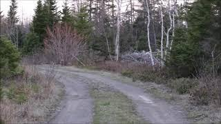 Haunts From The Cape - BLACK BROOK CEMETERY - Paranormal Investigation - Cape Breton