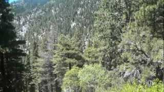 """Sierra Canyon & Genoa Peak - Part 7 """"Three Hours Into A 12 Hour Journey"""""""