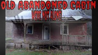 Abandoned Old Cabin {WERE NOT ALONE}!