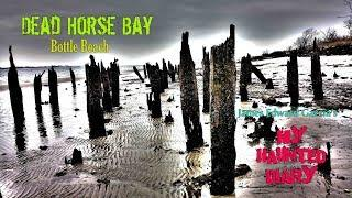 Dead Horse Bay Bottle Beach Exploration Urbex My Haunted Diary