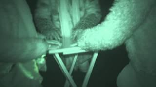 Fort Borstal ghost hunt - 28th February 2015 - Ouija board and Table Tilting Group 2