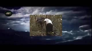 Destination Truth S01E03 Ropen and Chupacabra