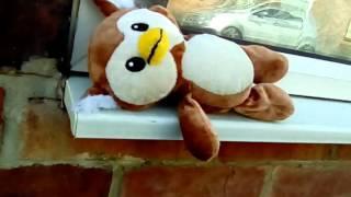 Owl teddy Stranded?
