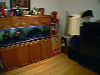 Ghost Hunters S03E12 - Cielo Drive House & Jim Henson Studios