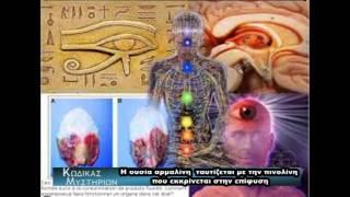 Επίφυση:Ο μυστηριώδης αδένας στον ανθρώπινο εγκέφαλο!