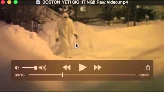 BOSTON YETI SIGHTING!! Raw Video Breakdown