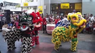 Lion Dance - Chinatown, Adelaide, South Australia - 13-2-2016