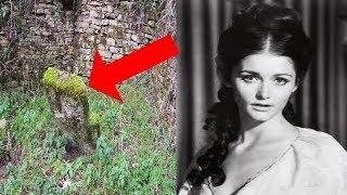 10 Unusual Things You Won't Believe Were Found In A Backyard