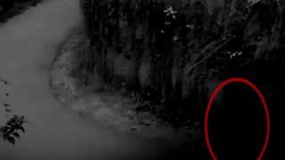 Ghost Caught on Cctv Camera From a Huanted Forest Road, Scary Videos