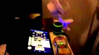 Echovox session with my bird; 8/14/14