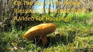 On The Day Of Her Arrival~ Blessing Of The Great Spirit ~ A Video For Hazeleigh