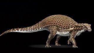 Amazing well preserved 110 million year old Armoured 'Nodosaur' found in Alberta, Canada