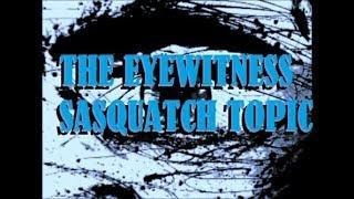 T E S T #6: UNFORGETTABLE 2010 UFO Sighting All 3 Of Us & Sasquatch Screams Confirmed