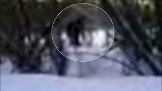 The clearest sighting of a Yeti