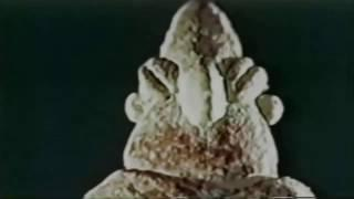 2 In Search of Ancient Mysteries (1973)