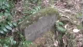 Graveyard Exploration - The Forgotton Graveyard