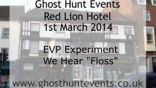 Brook Red Lion Hotel EVP 3 on 1st March 2014