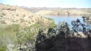 Colorado River Nelson's Landing Picnic