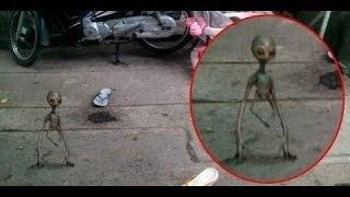 Shocking Documentary Extraterrestrial Life Reality Best Alien Sighting
