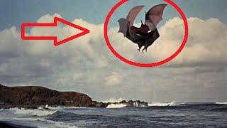 Flying Monsters full documentary HD