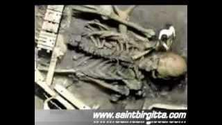 PARANORMAL CREATURES, GIANTS, GHOSTS & SEAMONSTERS ON CAMERA