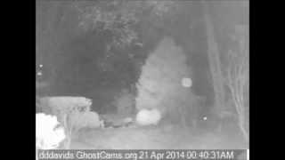 Strange lights and orbs captured on the Ghost Cams over a few nights