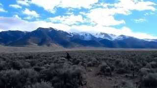 "Cold Springs Nevada - Part 5 ""Journey Into The Desatoya Mountains"""