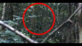 Is That a Big Foot or Ghost Strange Figure Caught on Camera