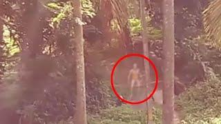 Ghost Activity In Forest - Most Shocking Demon Sighting