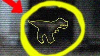 Real Baby Tyrannosaurs Rex Caught On Camera REAL or FAKE? del bebé Tyrannosaurus cogido en cámara