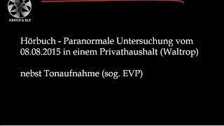 Serie - Spuk im Privathaushalt S01E03 (Hörbuch) - Deutsche Geisterjäger
