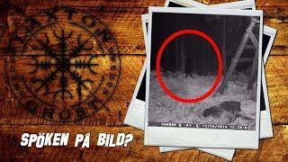 Spöken På Bild - S2 Del 5 - Skuggan i skogen - LaxTon Spökjägare