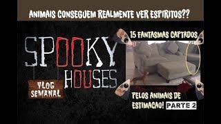 Análise Espiritual - 15 fantasmas captados pelos animais de estimação! (2)
