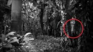 Ghostly Figure Caught on Camera From a Haunted Forest !! Supernatural Ghost Attack Footage