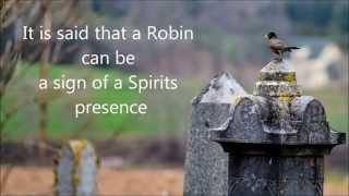 The Spirits were busy - A haunted response - Stewiacke, NS