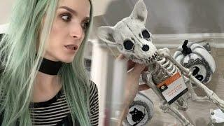 Vlog | Ghost Hunting & Weekend Randomness