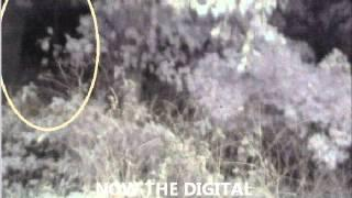 Ghost Hunters - Spirit Box V Digital Recorder