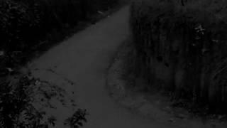 Scary videos , Mysterious Shape Caught on CCTV , Ghost Spotted on A Haunted Road - Haunted Palace