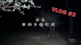 VLOG #3 EL BOSQUE (THE FOREST) Comprando GoPro3 hero+ Silver