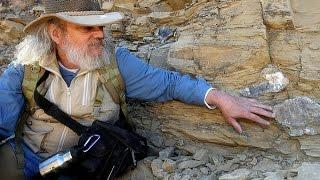 290 Million Year Old Human Footprints Discovered?