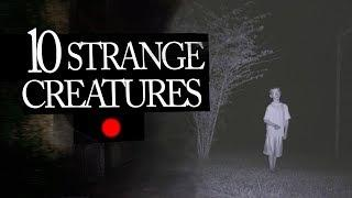 10 Strange Creatures People Caught on Camera