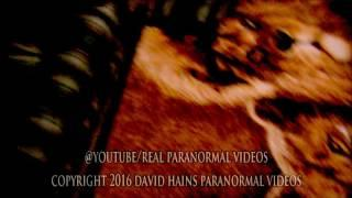 Alien Hybrid Demon Caught On Tape, SCARY, Slow Motion and Zoomed NEW 2016
