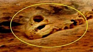 Dinosaur Fossil In Mars Photo From NASA's Curiosity