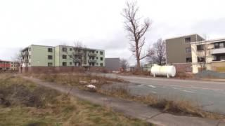 Abandoned Shannon Park
