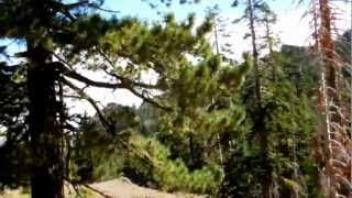 "Mount Raymond -  Part 23 ""Into The Mokelumne Wilderness"""