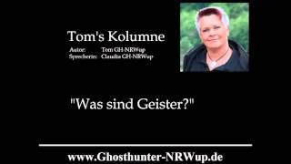 Tom's Kolumne / Thema: Was sind Geister? [Geisterjagd]